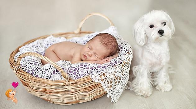пособие при рождении ребенка в Беларуси: регистрация
