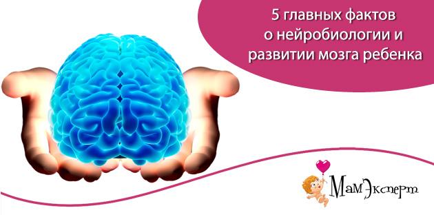 нейробиологии