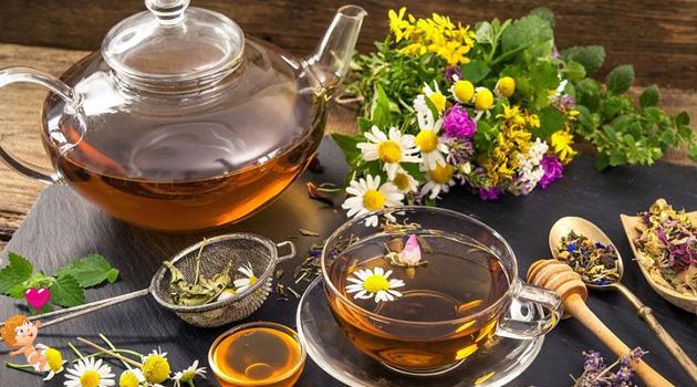 можно ли пить чай во время беременности